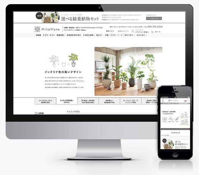 観葉植物通販HitoHana_baku-blog.com