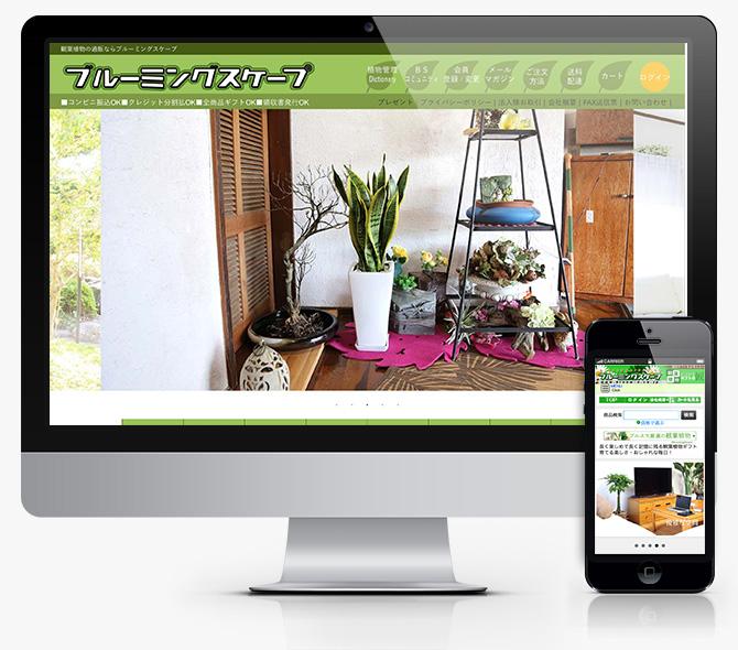 観葉植物通販ブルーミングスケープ_baku-blog.com